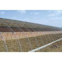 焊接式日光温室