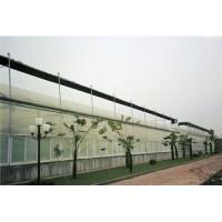 双层充气膜温室