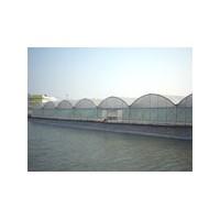 水产温室系列