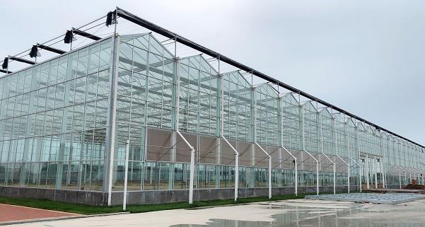 寿光阿里共同建设数字化蔬菜工厂项目