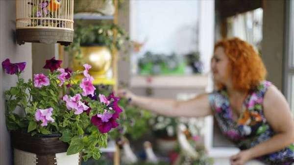 """土耳其种植者协会主席:""""新冠肺炎病毒激起了人们对观赏植物的兴趣"""""""