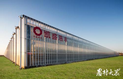 莱西市经济开发区胡家疃村青岛浩丰新建的智慧温室2