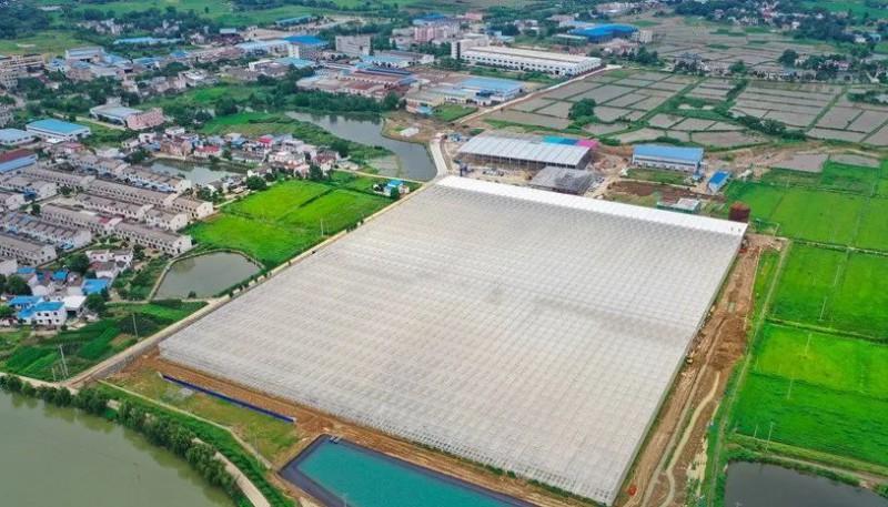 安徽省桐城现代智慧农业产业园总投资10亿元4