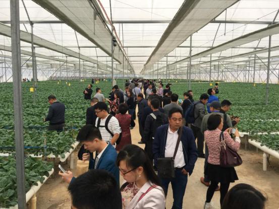 中国温室年会20年足迹7173